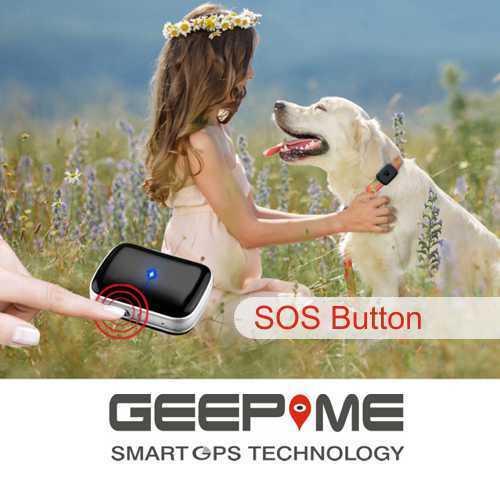 Geepme TD05 Tracker für Tiere